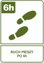 Ruch pieszy po 6h