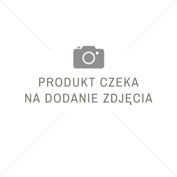 Grunt krzemianowo - polimerowy GREINPLAST UKP